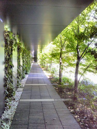 東洋文庫ミュージアム庭園