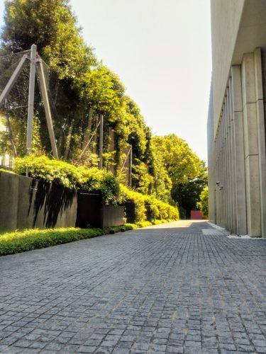 東洋文庫ミュージアム庭園へと続く道
